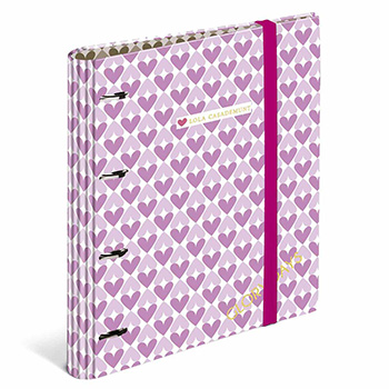 stationery ringbinder folders folder ringbinder rings